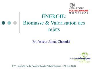 ÉNERGIE: Biomasse & Valorisation des rejets