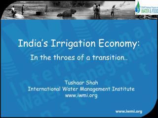India s Irrigation Economy: