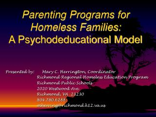 Parenting Programs for  Homeless Families: A Psychodeducational Model