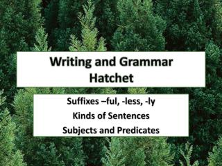 Writing and Grammar Hatchet