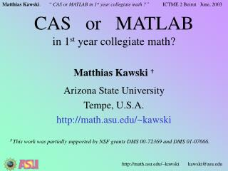 CAS   or   MATLAB in 1 st  year collegiate math?