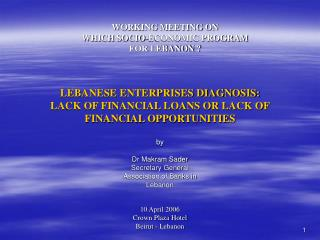 LEBANESE ENTERPRISES DIAGNOSIS: LACK OF FINANCIAL LOANS OR LACK OF FINANCIAL OPPORTUNITIES