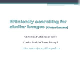 Efficiently searching for similar images  ( Kristen Grauman )