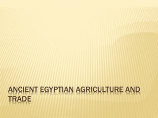 Ancient Egyptian Agriculture and Trade