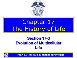 Chapter 17 The History of Life