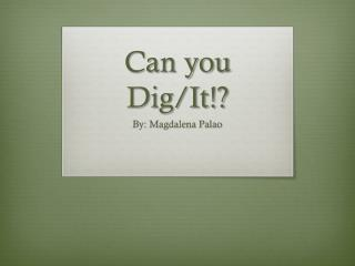 Can you Dig/It!?