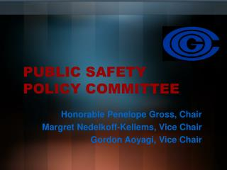 PUBLIC SAFETY POLICY COMMITTEE