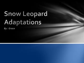 Snow Leopard Adaptations