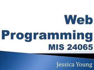 Web Programming MIS 24065