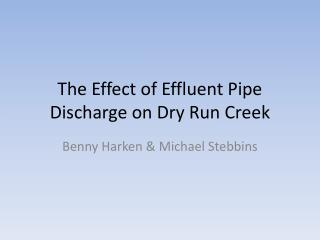 The Effect of Effluent Pipe Discharge on Dry Run Creek