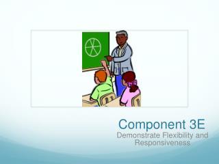Component  3E