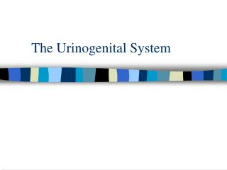 The Urinogenital System
