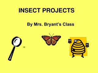 INSECT PROJECTS