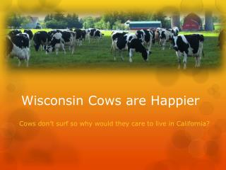 Wisconsin Cows are Happier