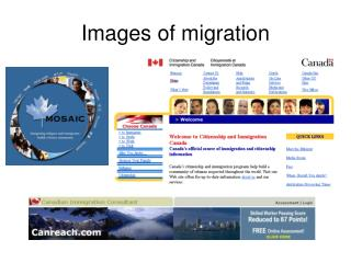 Images of migration