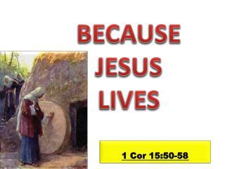 1  Cor  15:50-58