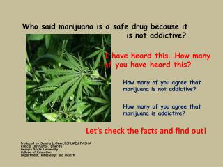 Who said marijuana is a safe drug because it                                 is not addictive?