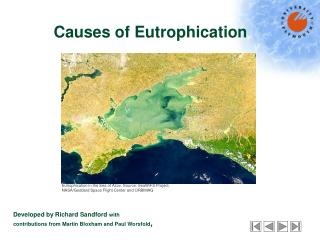 Causes of Eutrophication