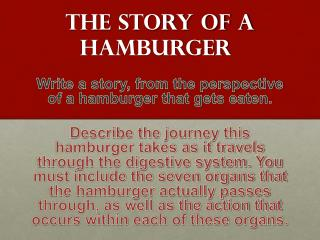 The story of a hamburger
