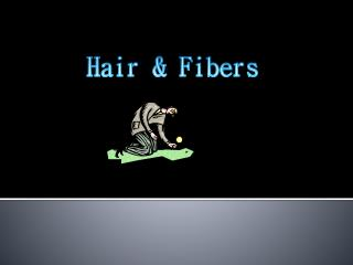 Hair & Fibers