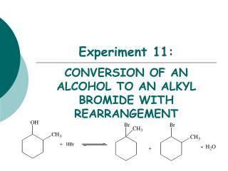 Experiment 11: