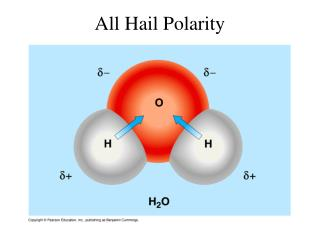 All Hail Polarity