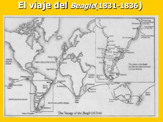 El viaje del  Beagle (1831-1836 )