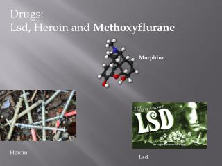 Drugs: Lsd , Heroin and  Methoxyflurane