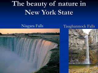 The beauty of nature in New York State