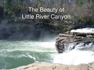 The Beauty of  Little River Canyon