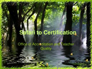 Safari to Certification