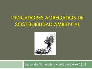 Indicadores agregados de Sostenibilidad ambiental