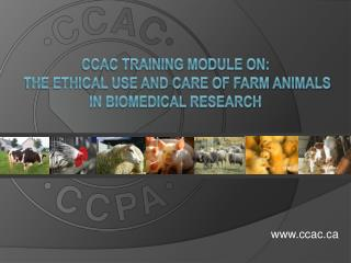 CCAC Training Module on:  the Ethical Use and Care of Farm Animals in Biomedical Research
