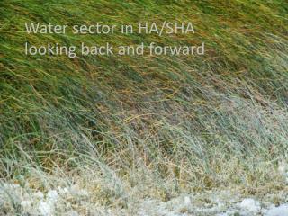 Water  sector  in HA/SHA looking  back and  forward
