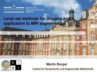 Level set methods for imaging and application to MRI segmentation