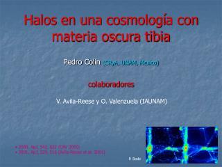 2000, ApJ, 542, 622 (CAV 2000)  2001, ApJ, 559, 516 (Avila-Reese et al. 2001)