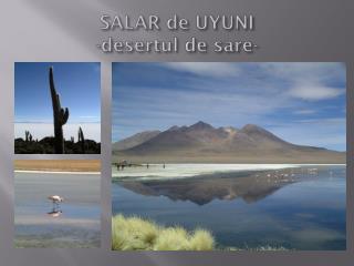 SALAR de UYUNI - desertul  de  sare -