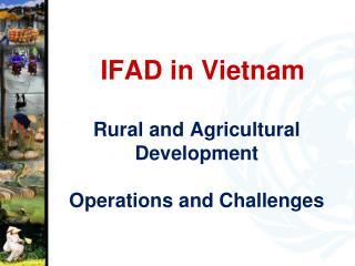 IFAD in Vietnam