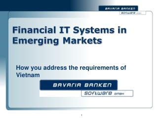 Financial IT Systems in Emerging	 Markets