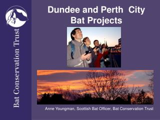 Dundee and Perth  City Bat Projects