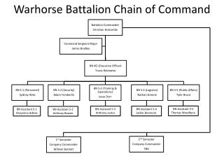 Warhorse Battalion Chain of Command