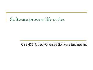 Software process life cycles