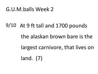 G.U.M.balls  Week 2