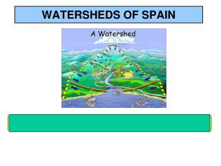WATERSHEDS  OF  SPAIN