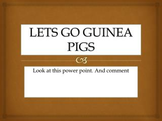LETS GO GUINEA PIGS
