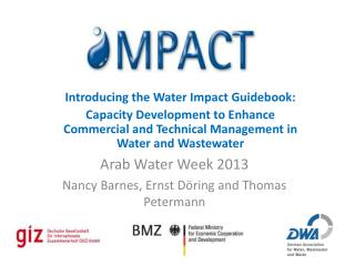 Introducing the Water Impact Guidebook: