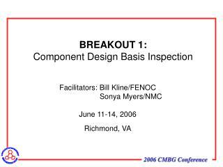 BREAKOUT 1: Component Design Basis Inspection