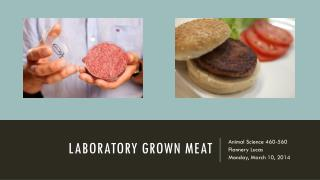 Laboratory grown meat