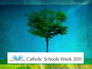 'Catholic Schools  -  Rooted in Jesus Christ'