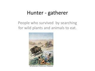 Hunter - gatherer